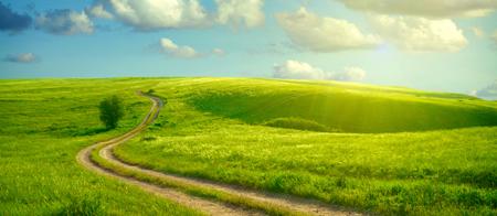 camino-verde
